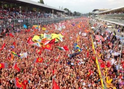 Fernando Alonso posted this photo on Twitter, of the Tifosi and their view from the podium after the 2013 italian grand prix